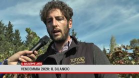 San Giuseppe Jato. Vendemmia 2020: il bilancio