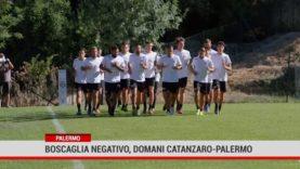 Palermo. Boscaglia negativo, domani Catanzaro- Palermo