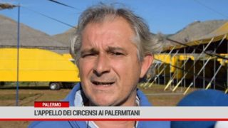 Palermo. L'appello dei circensi ai palermitani