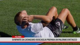 Palermo. Si riparte da Catanzaro: Boscaglia prepara un Palermo d'attacco