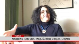 Palermo. Aumenta il tetto di detraibilità per le spese veterinarie