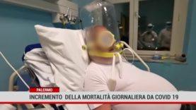 Palermo. Incremento  della mortalità giornaliera da covid-19