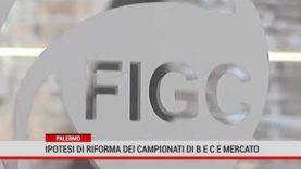 Palermo. Ipotesi di riforma dei campionati di B e C e mercato