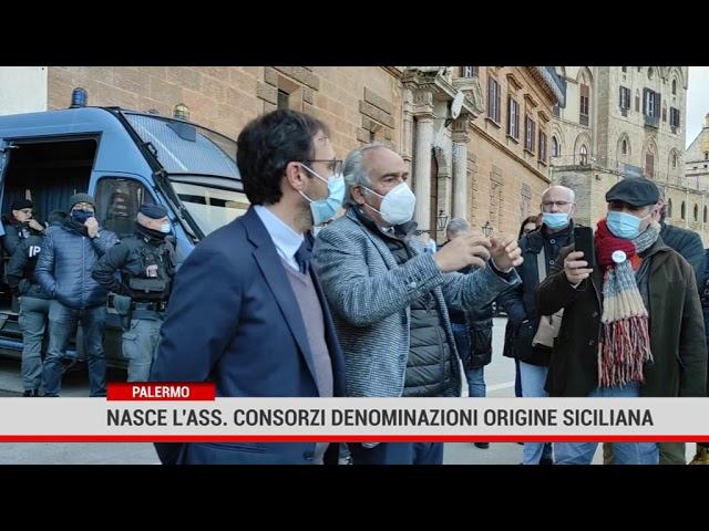 Palermo. Nasce l'associazione Consorzi Denominazioni Origine siciliana
