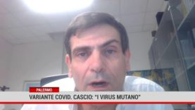 """Palermo. Variante covid. Cascio: """"i virus mutano"""""""
