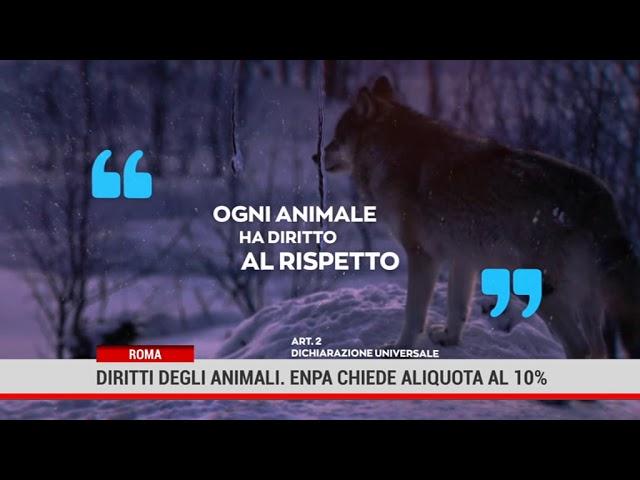 Roma. Diritti degli animali. Enpa chiede aliquota al 10%