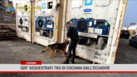 Catania. Gdf: sequestrati 7kg di cocaina dall'Ecuador