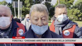 """Palermo. Forestali"""" chiediamo arretrati e riforma della categoria"""""""