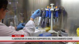 Palermo. I laboratori di analisi a supporto del tracciamento covid