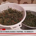 Carini. Spaccio di marijuana e rapine, 14 arresti