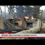 Incendi: Ebas sostiene le aziende colpite